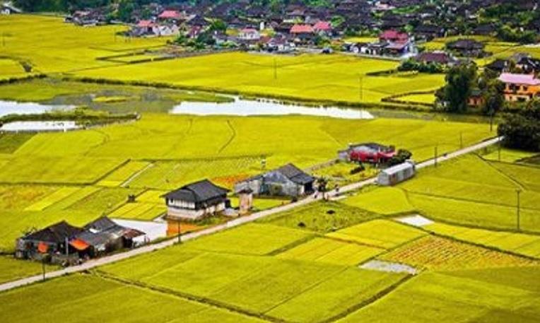 Người dân nên nắm rõ giá đền bù đất nông nghiệp bị thu hồi