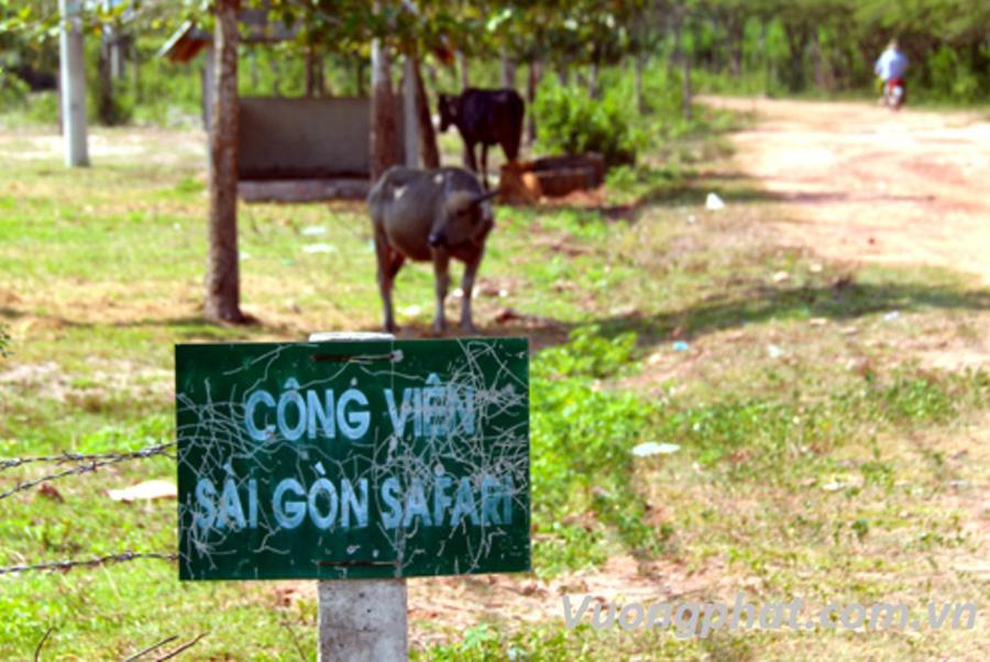 Dự án Sài Gòn Safari bị bỏ hoang